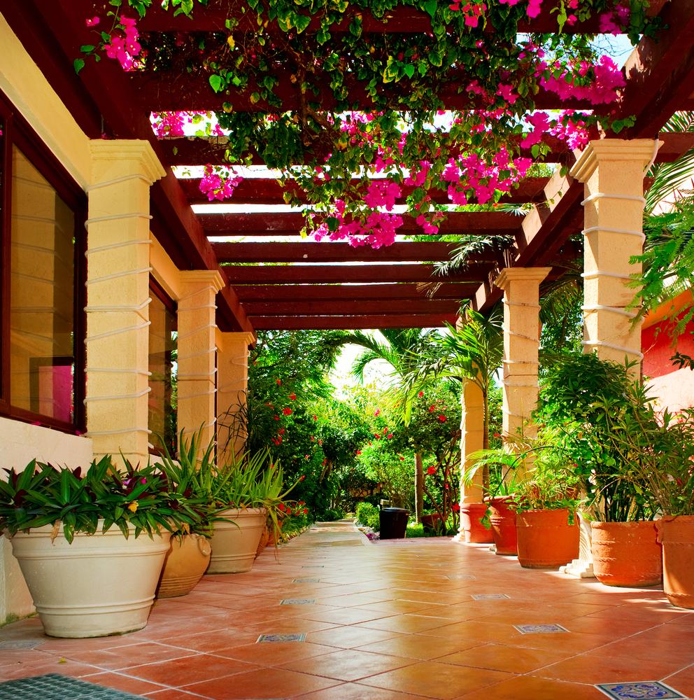 Цветы на террасе, сад
